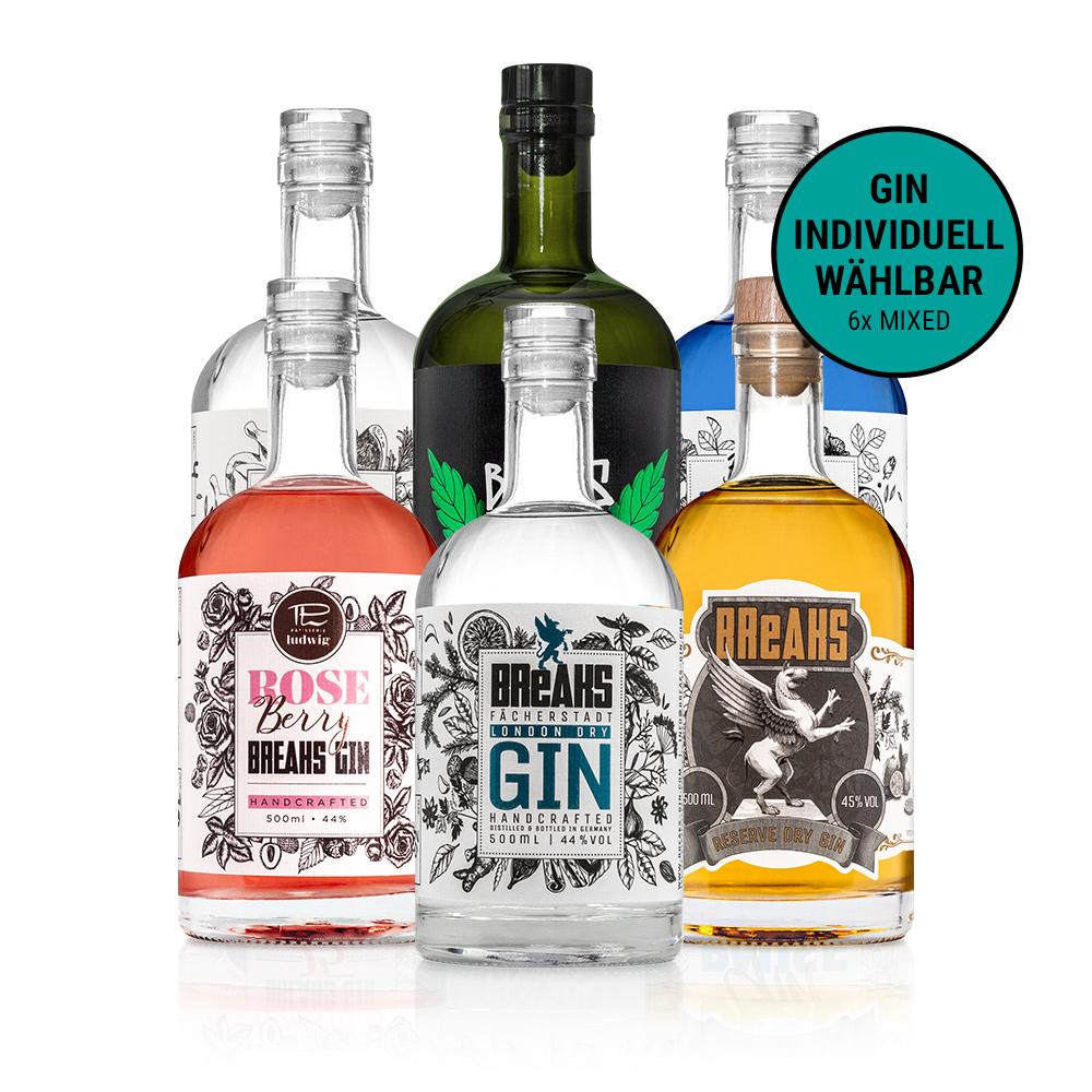 2021 Breaks Gin 6er Set Mixed